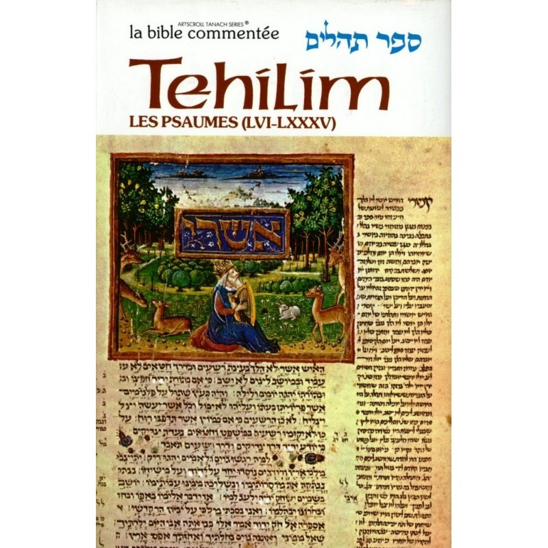 Sefer Tehilim - Les Psaumes II - Rabbin Avrohom Chaim Feuer - 2
