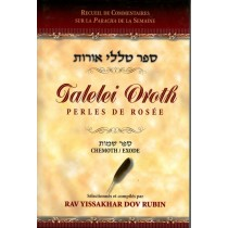 Talelei Oroth - Perles de Rosée - Béréchit / Genèse - Rav Yissakhar Dov Rubin - 1