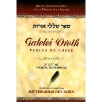 Talelei Oroth - Perles de Rosée - Dévarim / Deutéronome - Rav Yissakhar Dov Rubin - 1