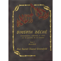 Bineoth Déché Tome 1 Béréchith - 1